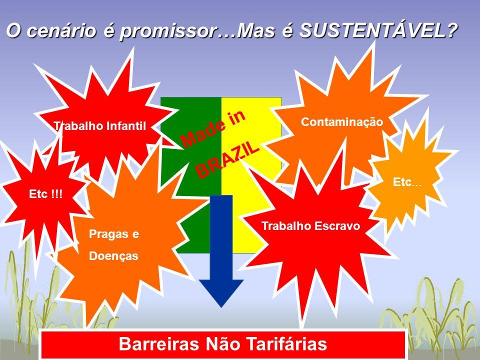 CONDUÇÃO ao MERCADO COORDENAÇÃO CONHECIMENTO CAPITAL HUMANO CRÉDITO COMÉRCIO CARGA FISCAL CIDADANIA COMPETITIVIDADE CLUSTERS CONSERVAÇÃO Os 10 Cs da Competitividade do Agribusiness