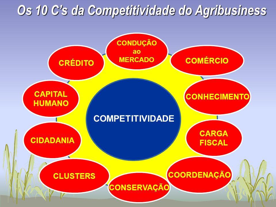 CONDUÇÃO ao MERCADO COORDENAÇÃO CONHECIMENTO CAPITAL HUMANO CRÉDITO COMÉRCIO CARGA FISCAL CIDADANIA COMPETITIVIDADE CLUSTERS CONSERVAÇÃO Os 10 Cs da C