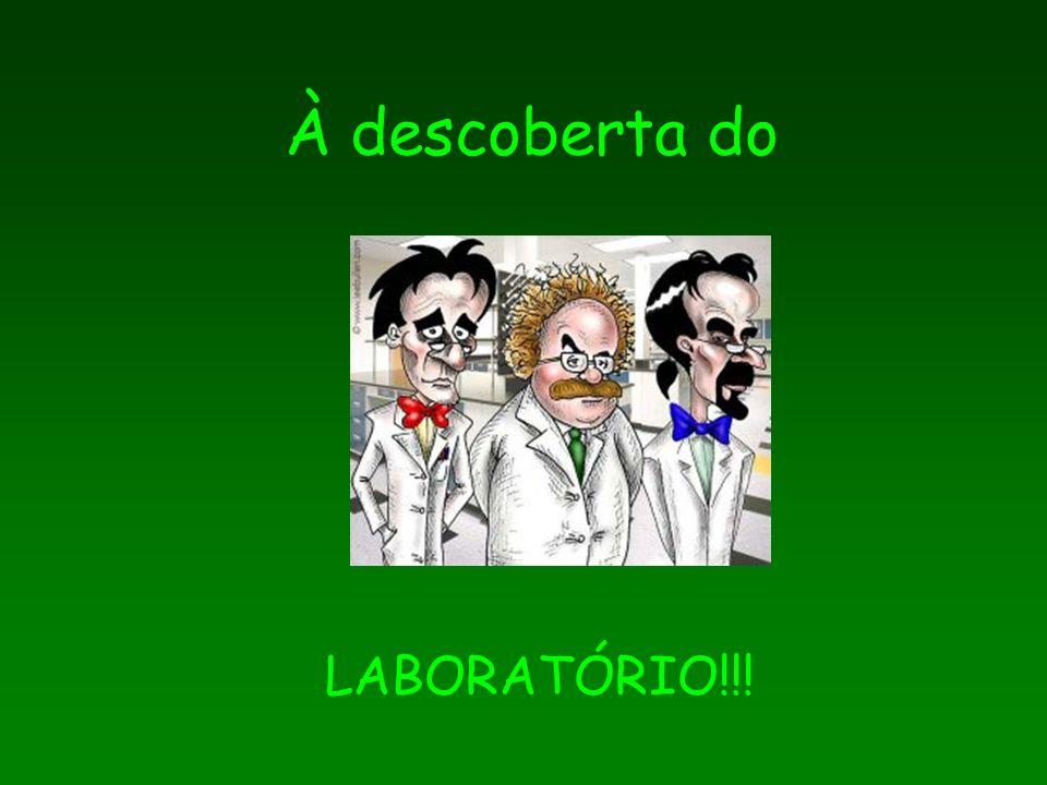 À descoberta do LABORATÓRIO!!!