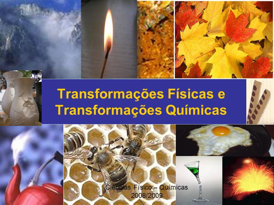 Ciências Físico – Químicas 2008/2009 Transformações Físicas e Transformações Químicas