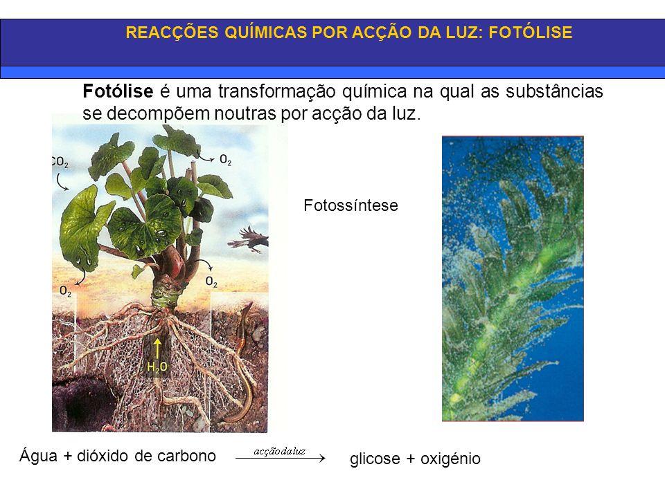 REACÇÕES QUÍMICAS POR ACÇÃO DA LUZ: FOTÓLISE Fotossíntese Água + dióxido de carbono glicose + oxigénio Fotólise é uma transformação química na qual as