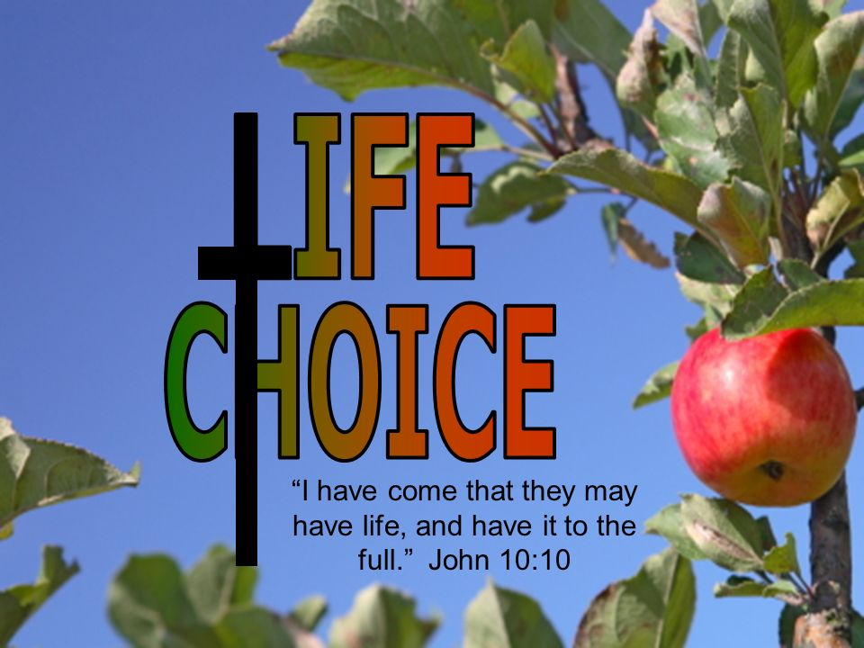 I have come that they may have life, and have it to the full. John 10:10