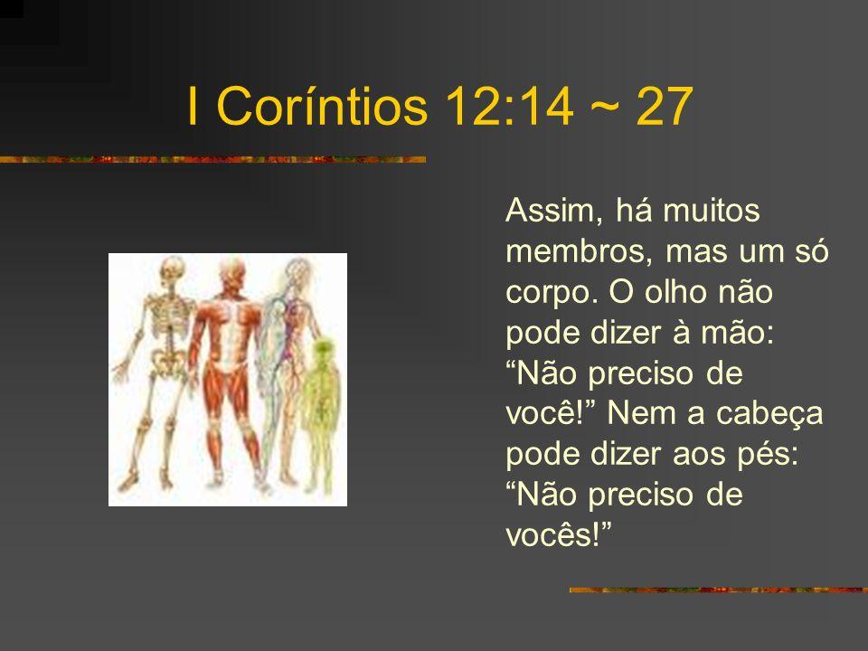 I Coríntios 12:14 ~ 27 Ao contrário, os membros do corpo que parecem mais fracos são indispensáveis, e os membros que pensamos serem menos honrosos, tratamos com especial honra.