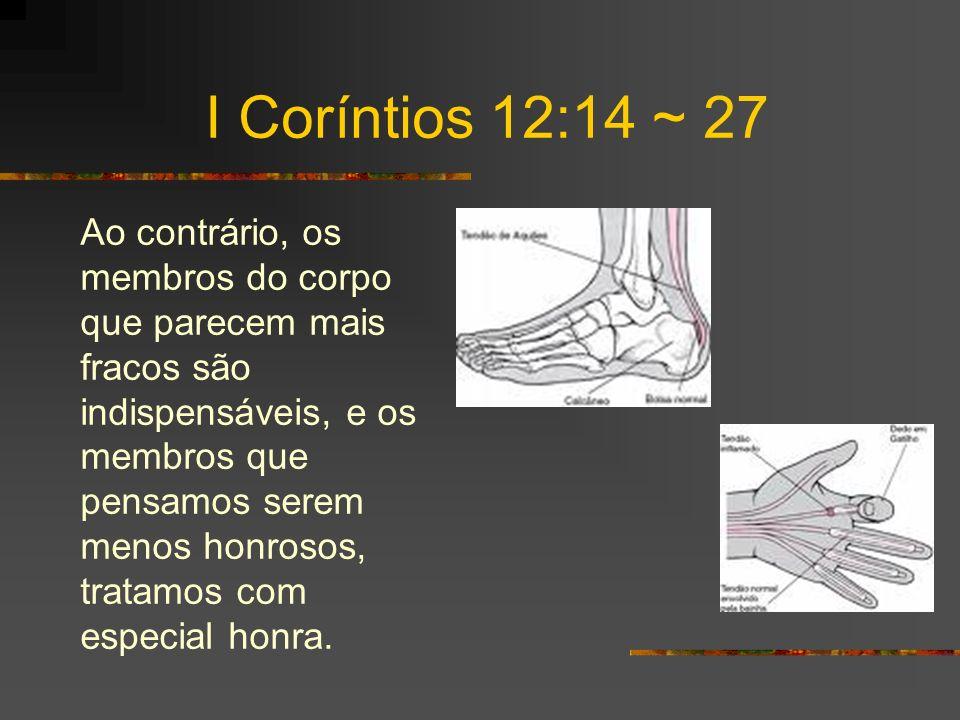 I Coríntios 12:14 ~ 27 E os membros que em nós são indecorosos são tratados com decoro especial, enquanto os que em nós são decorosos não precisam ser tratados de maneira especial.