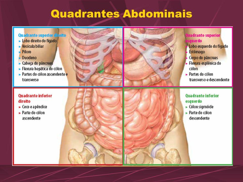 Quadrantes Abdominais