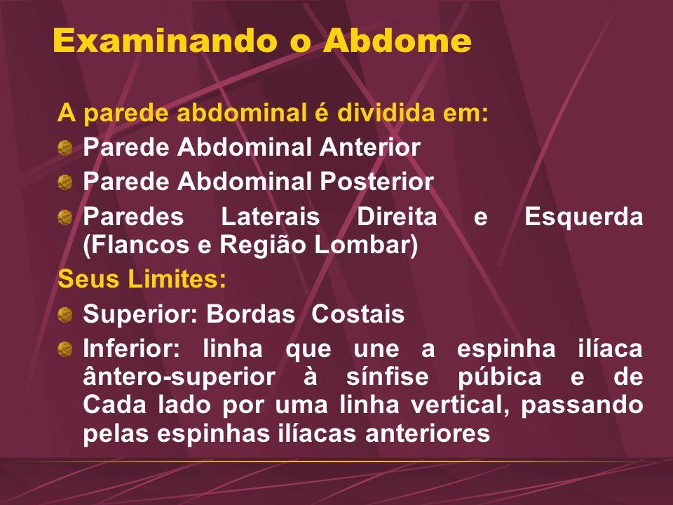 Examinando o Abdome A parede abdominal é dividida em: Parede Abdominal Anterior Parede Abdominal Posterior Paredes Laterais Direita e Esquerda (Flanco