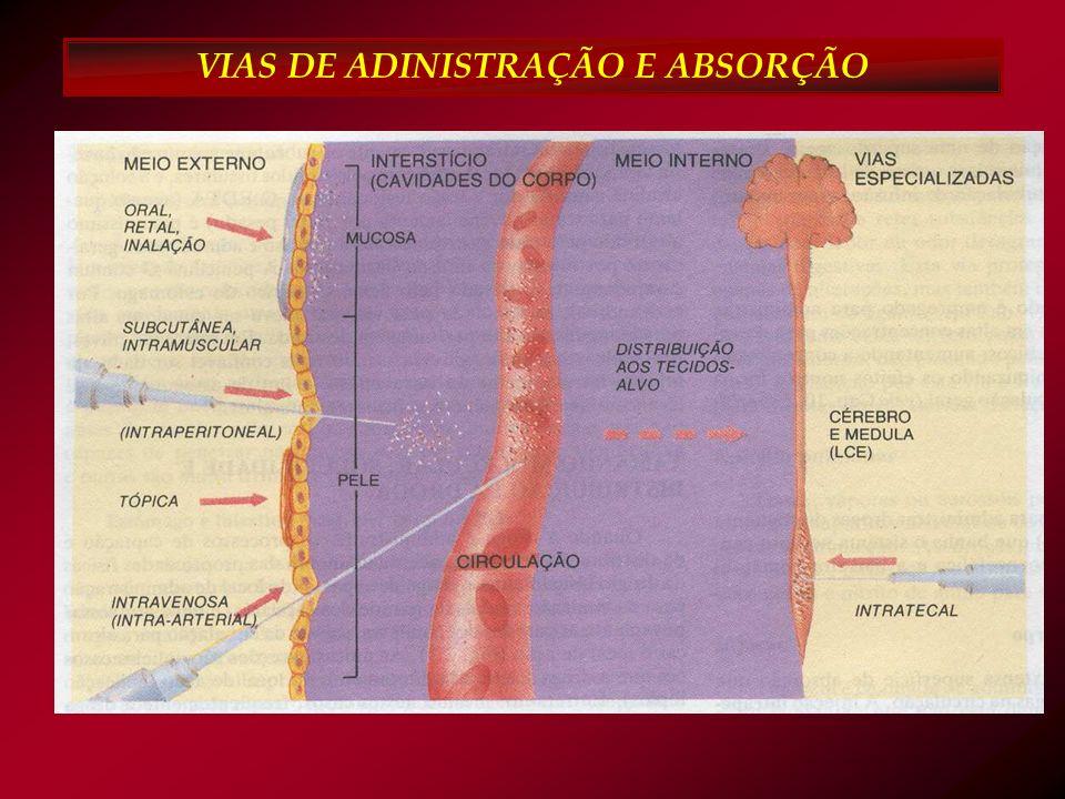 Cinco Certos Profissional HORÁRIO DOSE MEDICAMENTO PACIENTE VIA Medicação