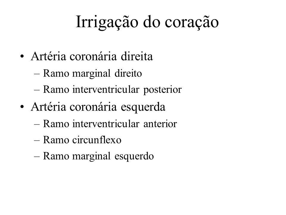 Irrigação do coração Artéria coronária direita –Ramo marginal direito –Ramo interventricular posterior Artéria coronária esquerda –Ramo interventricul