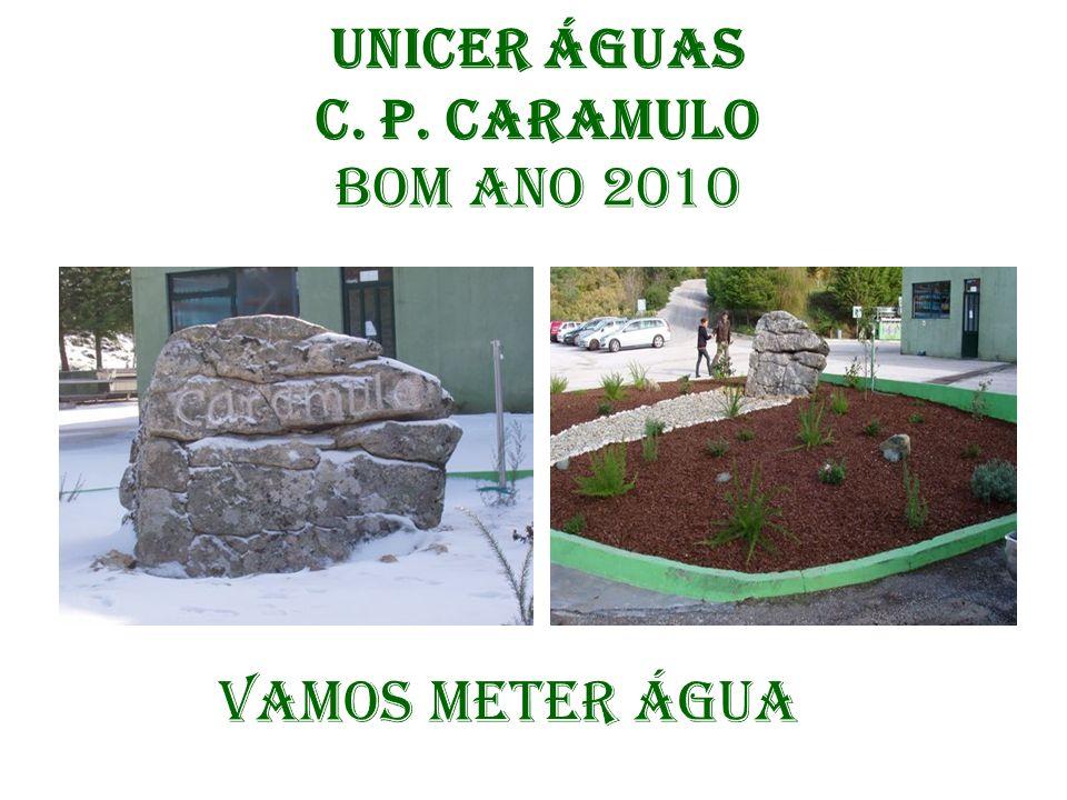 Unicer Águas C. P. Caramulo Bom Ano 2010