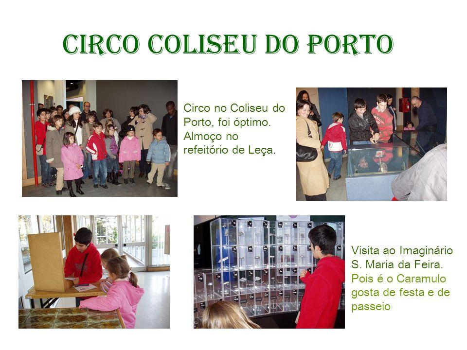 Circo Coliseu do Porto Circo no Coliseu do Porto, foi óptimo. Almoço no refeitório de Leça. Visita ao Imaginário S. Maria da Feira. Pois é o Caramulo