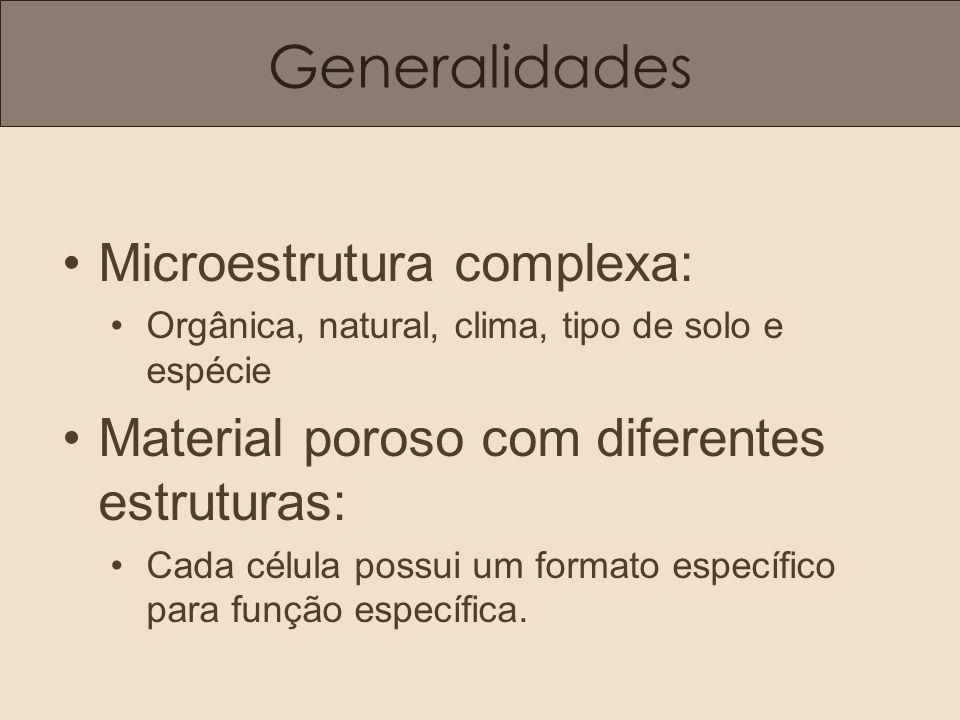 Generalidades Microestrutura complexa: Orgânica, natural, clima, tipo de solo e espécie Material poroso com diferentes estruturas: Cada célula possui