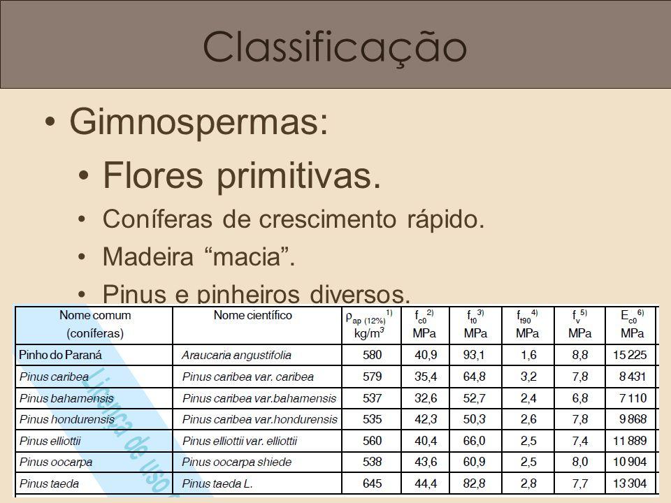 Classificação Gimnospermas: Flores primitivas. Coníferas de crescimento rápido. Madeira macia. Pinus e pinheiros diversos.