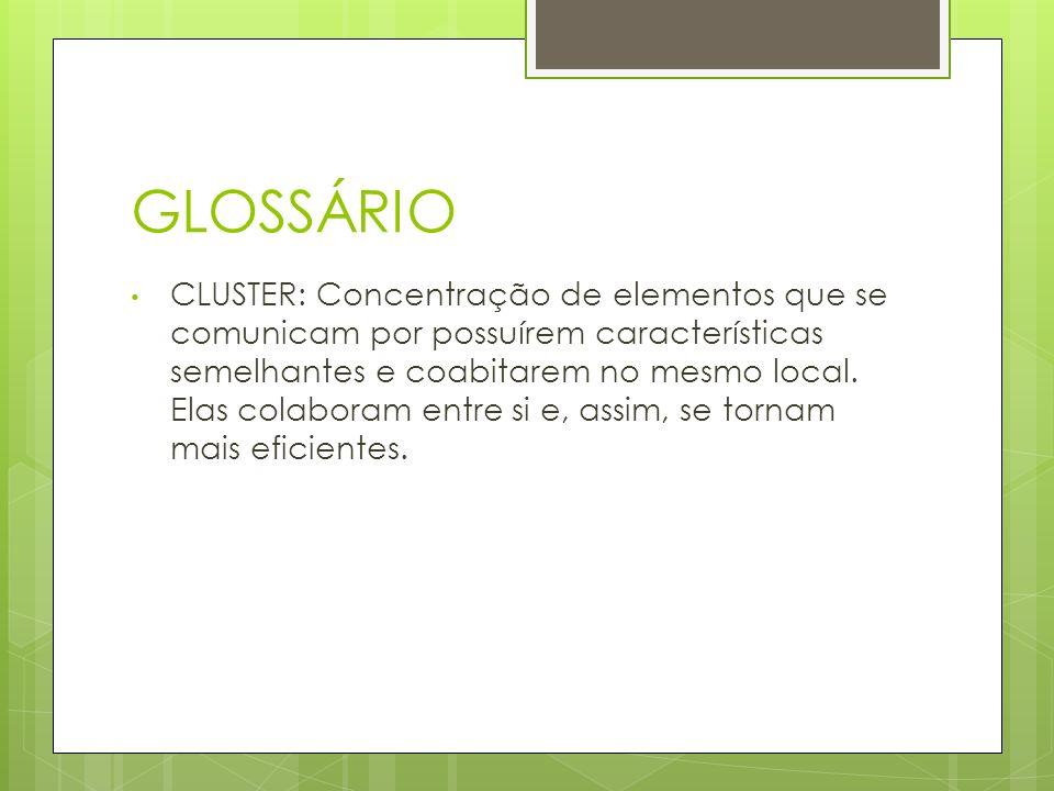 GLOSSÁRIO CLUSTER: Concentração de elementos que se comunicam por possuírem características semelhantes e coabitarem no mesmo local. Elas colaboram en