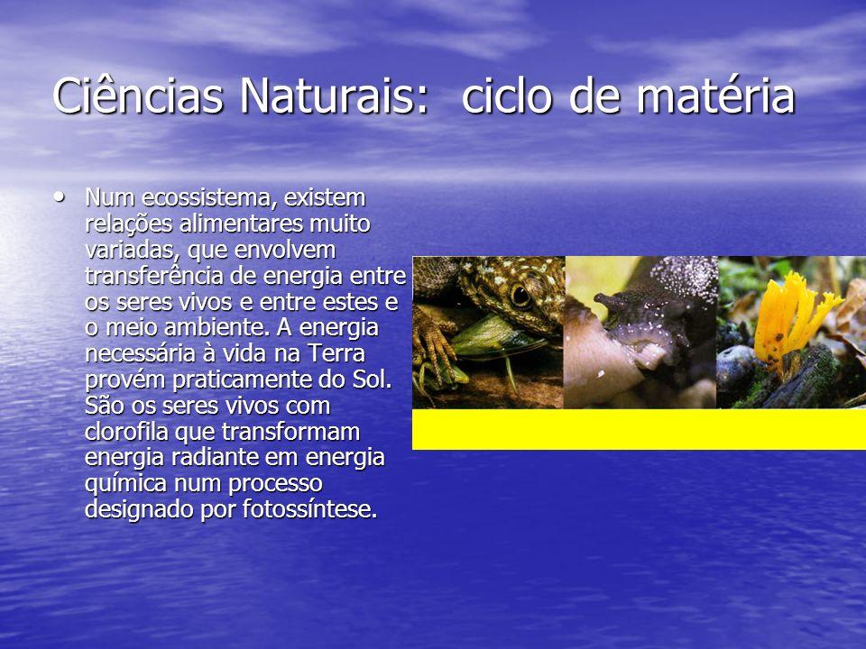 Ciências Naturais: ciclo de matéria Num ecossistema, existem relações alimentares muito variadas, que envolvem transferência de energia entre os seres