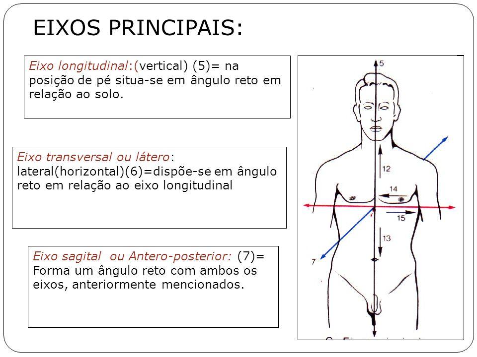 EIXOS PRINCIPAIS: Eixo longitudinal:(vertical) (5)= na posição de pé situa-se em ângulo reto em relação ao solo. Eixo transversal ou látero: lateral(h