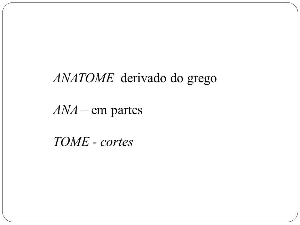 ANATOME derivado do grego ANA – em partes TOME - cortes