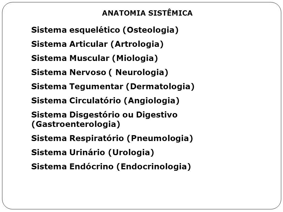 ANATOMIA SISTÊMICA Sistema esquelético (Osteologia) Sistema Articular (Artrologia) Sistema Muscular (Miologia) Sistema Nervoso ( Neurologia) Sistema T