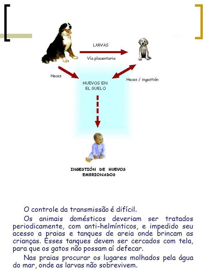O controle da transmissão é difícil. Os animais domésticos deveriam ser tratados periodicamente, com anti-helmínticos, e impedido seu acesso a praias