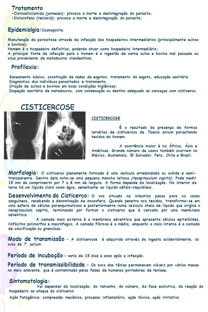 Tratamento -Clorosalicilamida (yomesan): provoca a morte e desintegração do parasita. -Diclorofeno (teniacid): provoca a morte e desintegração do para