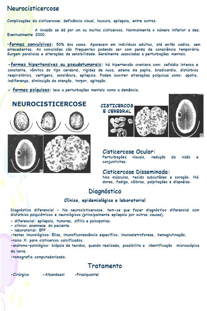 Neurocisticercose Complicações da cisticercose: deficência visual, loucura, epilepsia, entre outros. A invasão se dá por um ou muitos cisticercos. Nor