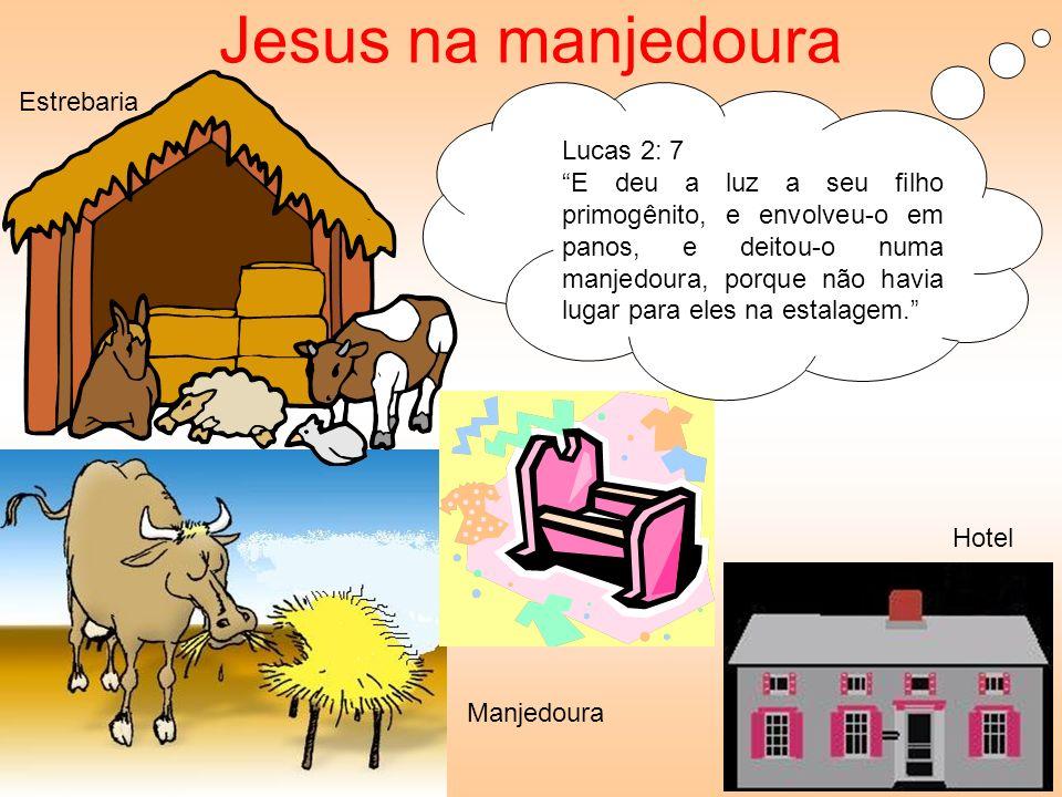 Lucas 2: 7 E deu a luz a seu filho primogênito, e envolveu-o em panos, e deitou-o numa manjedoura, porque não havia lugar para eles na estalagem. Jesu