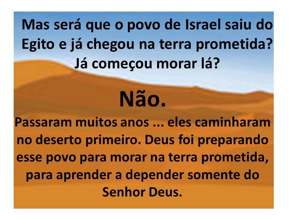 Mas será que o povo de Israel saiu do Egito e já chegou na terra prometida? Já começou morar lá? Não. Passaram muitos anos... eles caminharam no deser