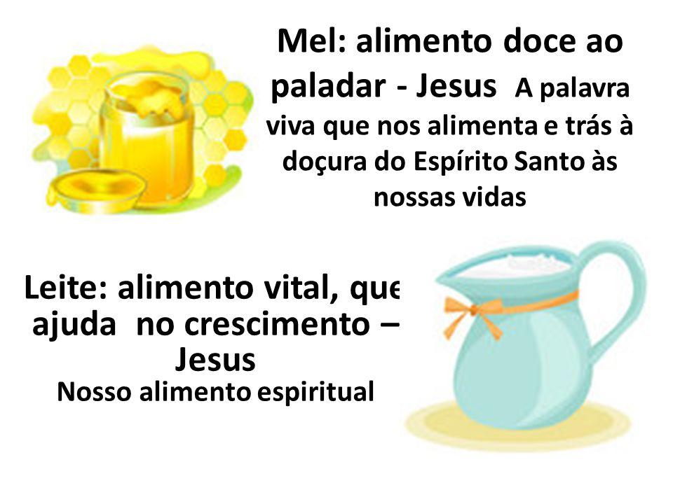 Mel: alimento doce ao paladar - Jesus A palavra viva que nos alimenta e trás à doçura do Espírito Santo às nossas vidas Leite: alimento vital, que aju