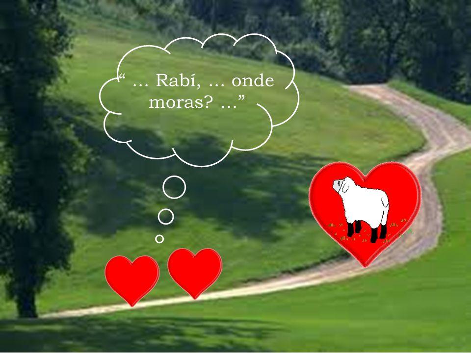 ... Rabí,... onde moras?...