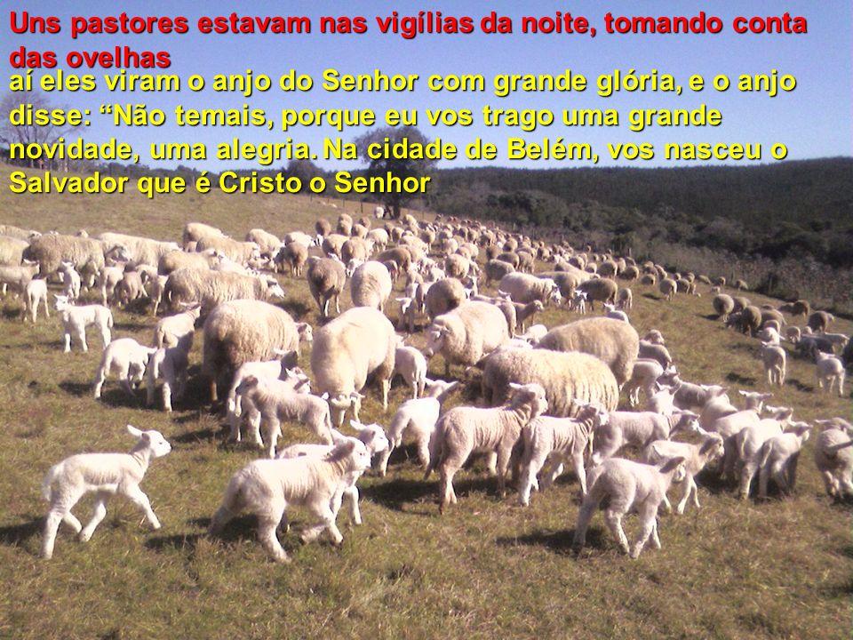 aí eles viram o anjo do Senhor com grande glória, e o anjo disse: Não temais, porque eu vos trago uma grande novidade, uma alegria.