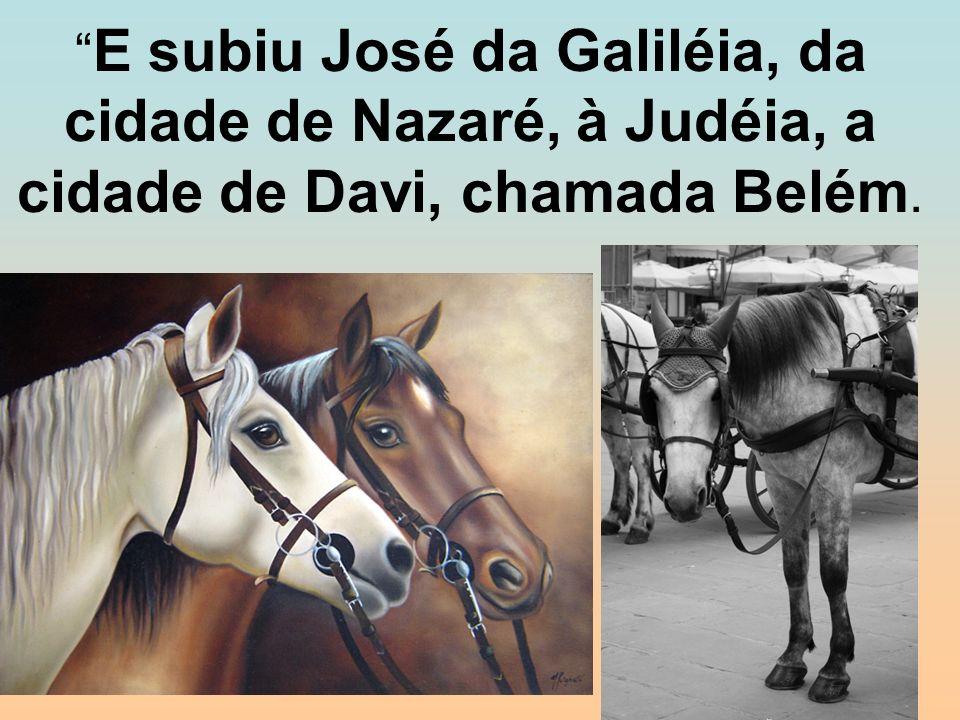 E subiu José da Galiléia, da cidade de Nazaré, à Judéia, a cidade de Davi, chamada Belém.