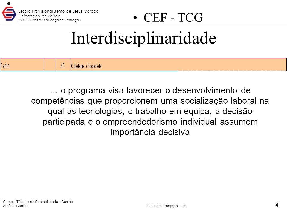 Curso – Técnico de Contabilidade e Gestão António Carmoantonio.carmo@epbjc.pt 4 Escola Profissional Bento de Jesus Caraça Delegação de Lisboa CEF – Cu