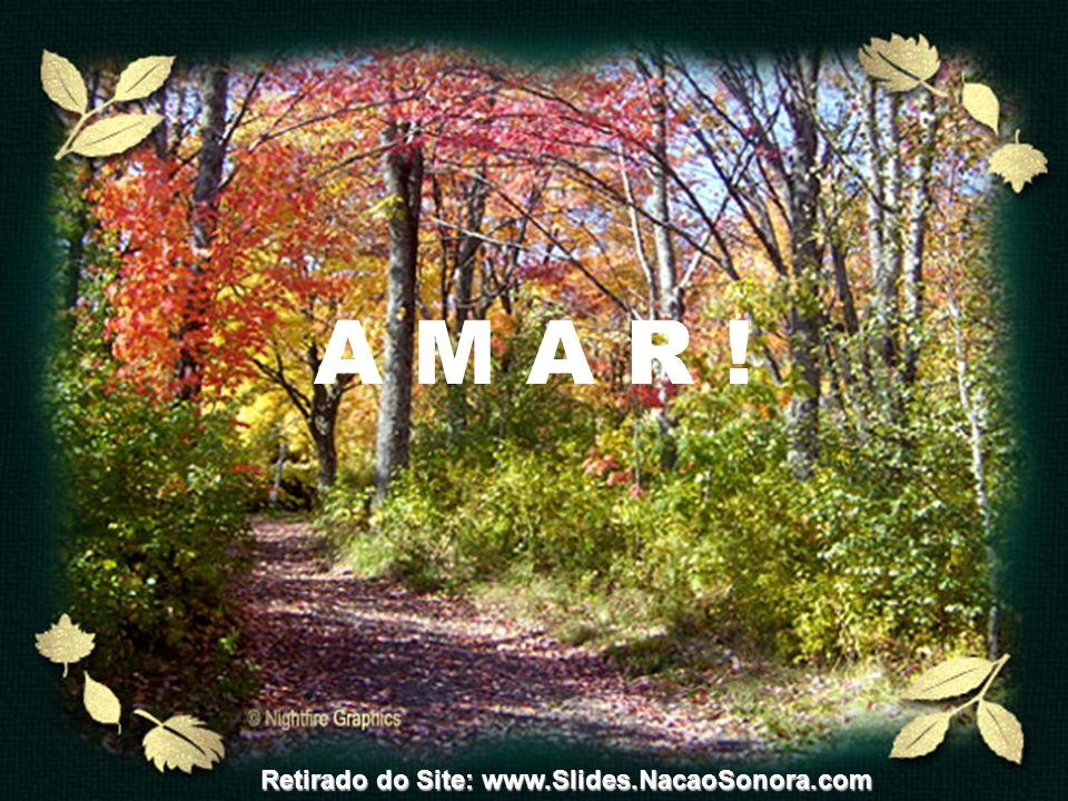 A M A R ! Retirado do Site: www.Slides.NacaoSonora.com