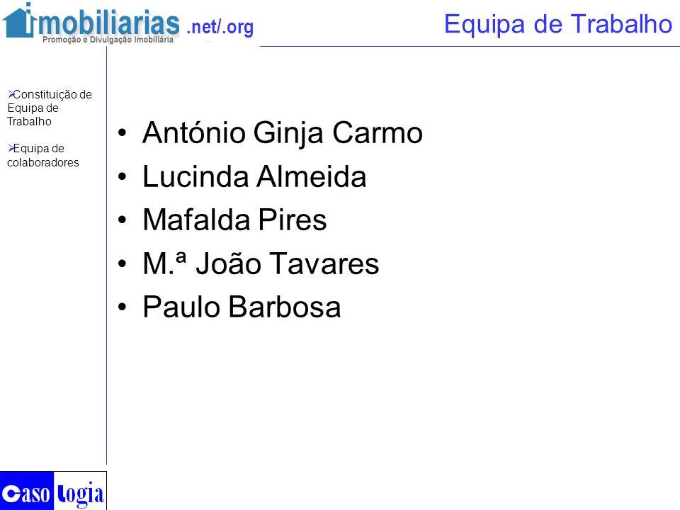 .net/.org Equipa de Trabalho António Ginja Carmo Lucinda Almeida Mafalda Pires M.ª João Tavares Paulo Barbosa Constituição de Equipa de Trabalho Equip