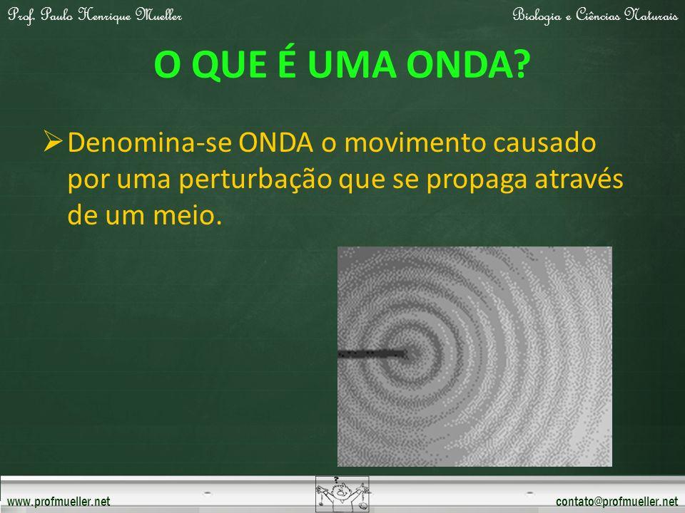 Prof. Paulo Henrique MuellerBiologia e Ciências Naturais www.profmueller.netcontato@profmueller.net O QUE É UMA ONDA? Denomina-se ONDA o movimento cau