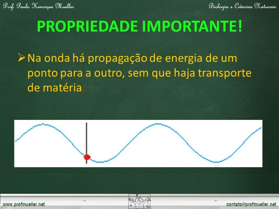 Prof. Paulo Henrique MuellerBiologia e Ciências Naturais www.profmueller.netcontato@profmueller.net PROPRIEDADE IMPORTANTE! Na onda há propagação de e