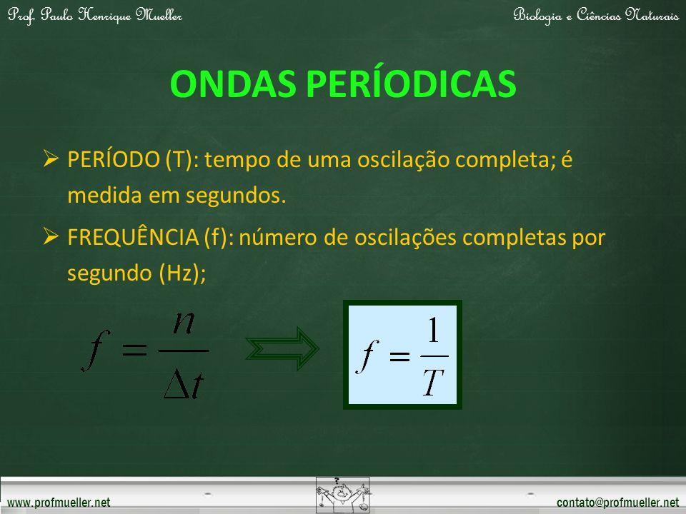 Prof. Paulo Henrique MuellerBiologia e Ciências Naturais www.profmueller.netcontato@profmueller.net ONDAS PERÍODICAS PERÍODO (T): tempo de uma oscilaç