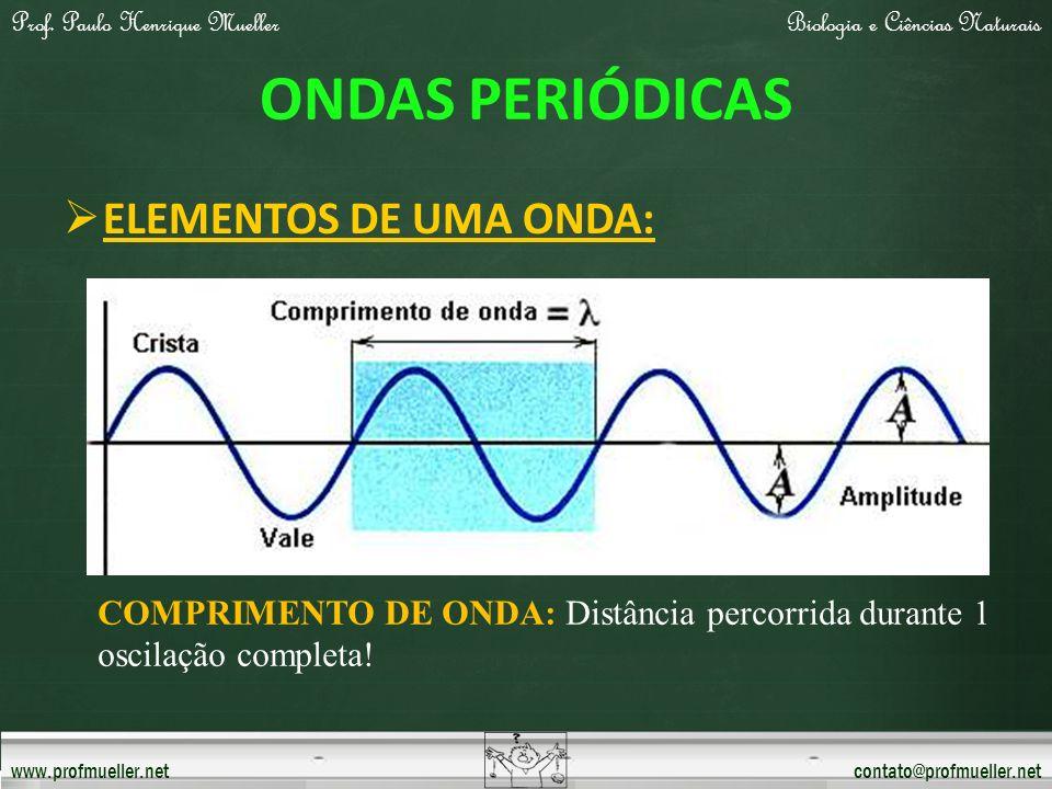 Prof. Paulo Henrique MuellerBiologia e Ciências Naturais www.profmueller.netcontato@profmueller.net ONDAS PERIÓDICAS ELEMENTOS DE UMA ONDA: COMPRIMENT