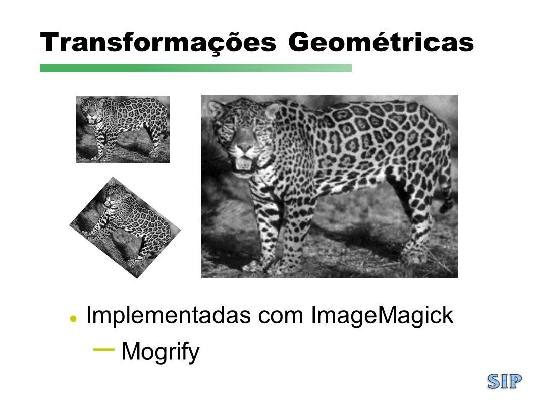 Transformações Geométricas Implementadas com ImageMagick – Mogrify