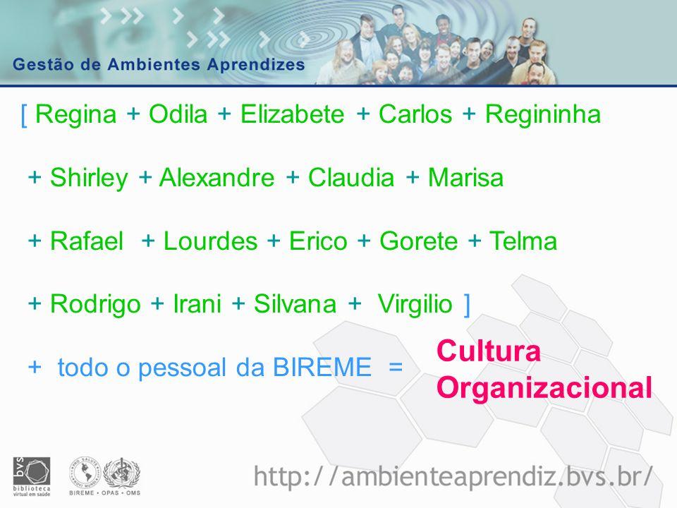 Cultura Organizacional [ Regina + Odila + Elizabete + Carlos + Regininha + Shirley + Alexandre + Claudia + Marisa + Rafael + Lourdes + Erico + Gorete