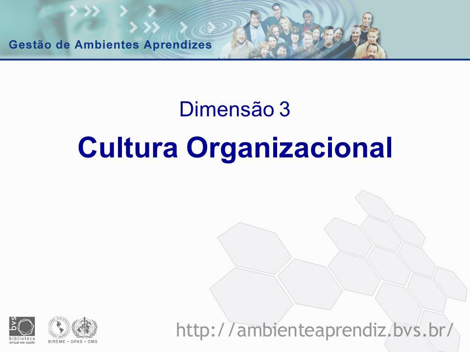 Cultura Organizacional Dimensão 3
