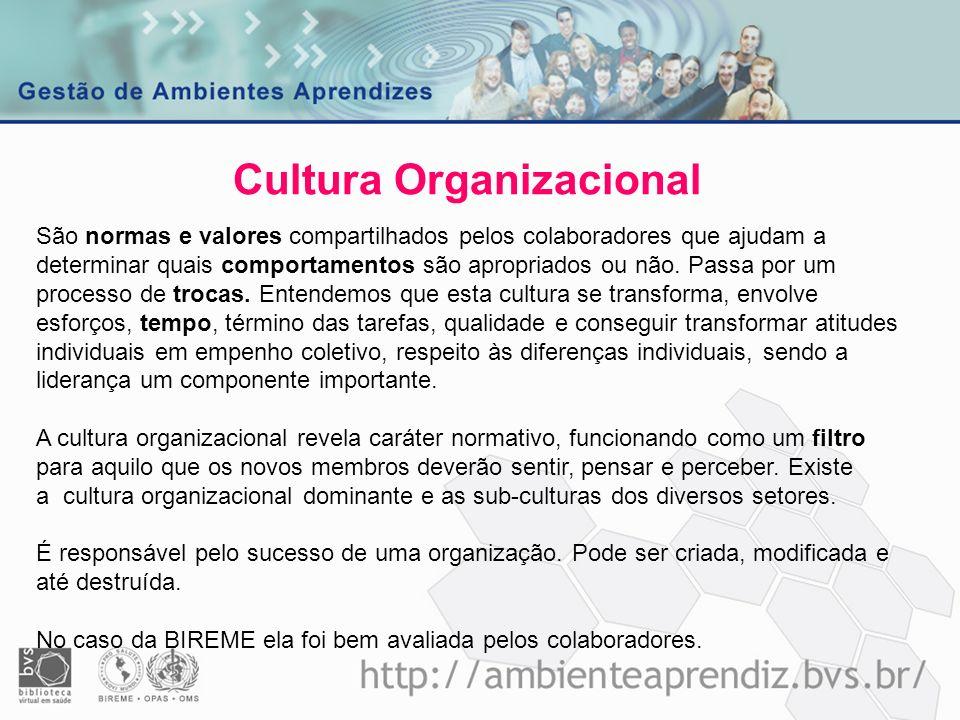 Cultura Organizacional São normas e valores compartilhados pelos colaboradores que ajudam a determinar quais comportamentos são apropriados ou não. Pa