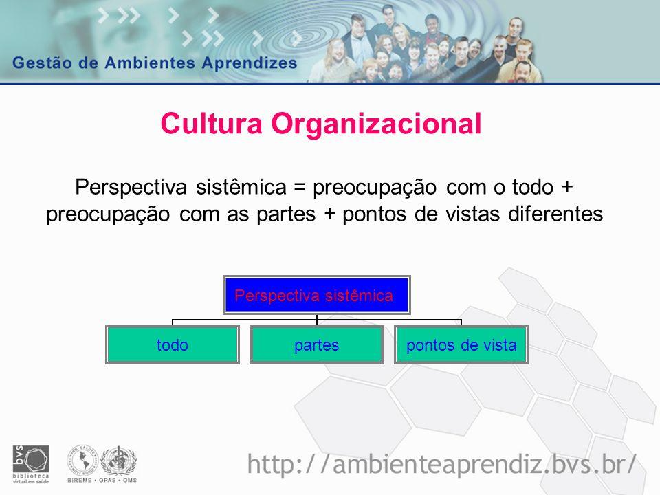 Cultura Organizacional Perspectiva sistêmica = preocupação com o todo + preocupação com as partes + pontos de vistas diferentes
