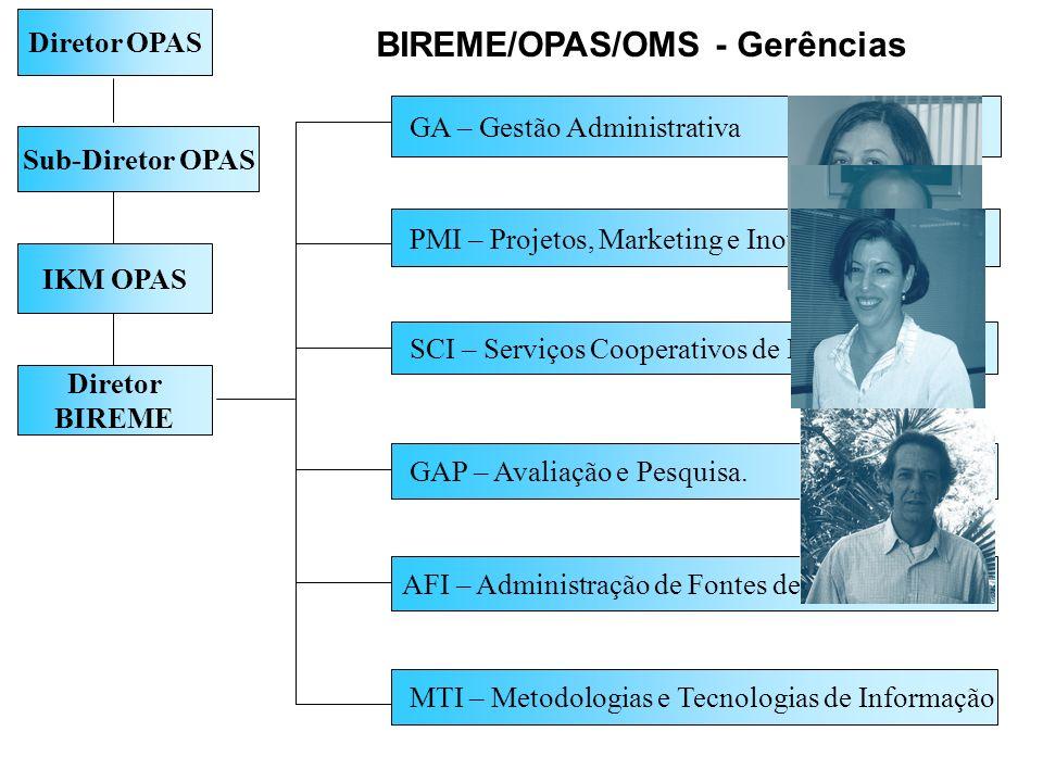 Diretor BIREME PMI – Projetos, Marketing e Inovação GAP – Avaliação e Pesquisa. SCI – Serviços Cooperativos de Informação GA – Gestão Administrativa I