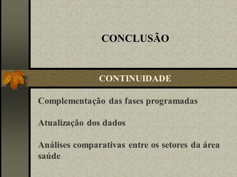 CONCLUSÃO Complementação das fases programadas Atualização dos dados Análises comparativas entre os setores da área saúde CONTINUIDADE
