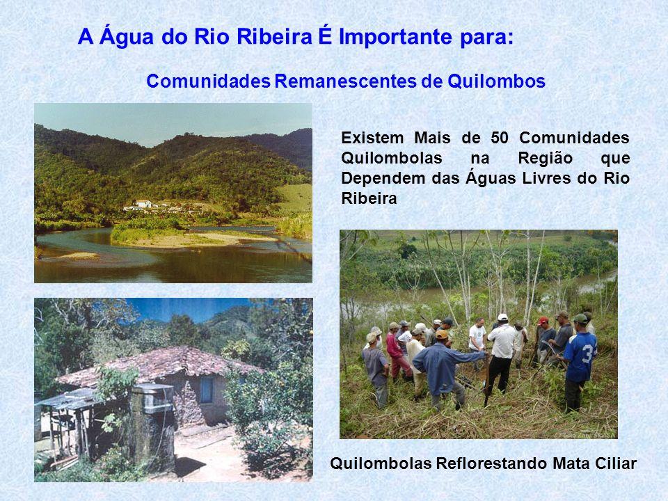 A Água do Rio Ribeira É Importante para: Comunidades Remanescentes de Quilombos Existem Mais de 50 Comunidades Quilombolas na Região que Dependem das