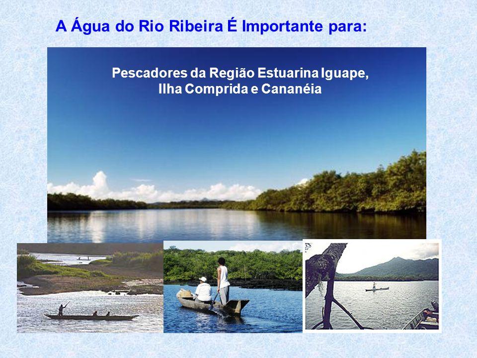 A Água do Rio Ribeira É Importante para: Pescadores da Região Estuarina Iguape, Ilha Comprida e Cananéia
