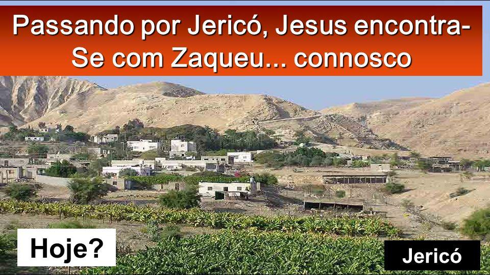 Lc 19, 1-10 Naquele tempo, Jesus entrou em Jericó e co- meçou a atravessar a cidade. Velho sicómoro de Jericó
