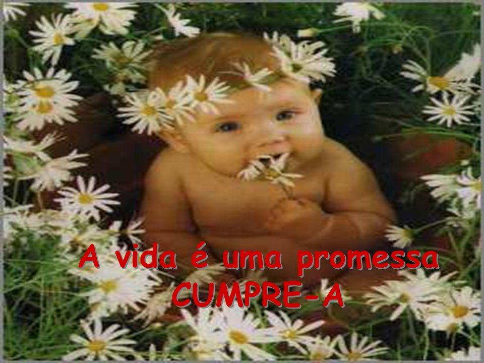A vida é uma promessa CUMPRE-A