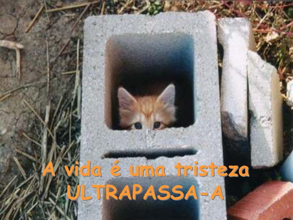 A vida é uma tristeza ULTRAPASSA-A