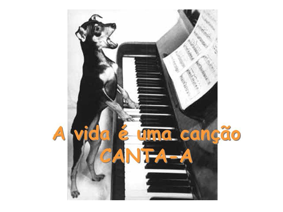 A vida é uma canção CANTA-A